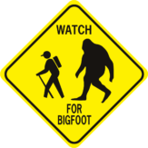 Watch for Bigfoot diamond