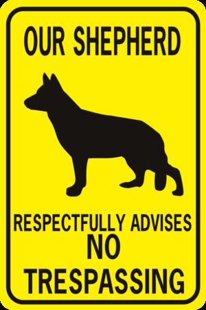 our shepherd respectfully advises