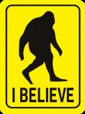 Bigfoot I Believe Rectangle