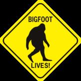 Bigfoot Lives Diamond