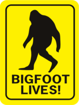 Bigfoot Lives Rectangle