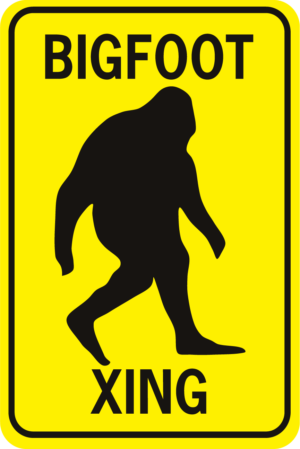 Bigfoot Xing Rectangle