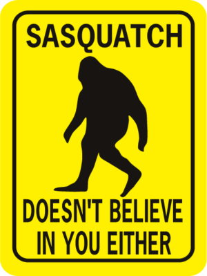 Sasquatch Doesn't Believe In You Either Rectangle