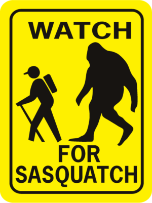 Sasquatch Watch For Sasquatch Rectangle