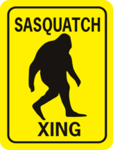 Sasquatch Xing Rectangle