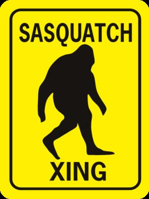 Sasquatch Xing Rectangle
