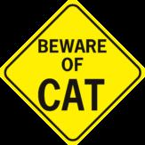 Beware of Cat Diamond
