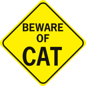 Beware of Cat Diamond