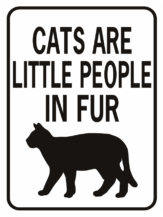 cats are little people in fur