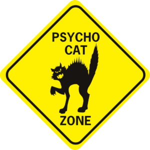 Psycho Cat Zone