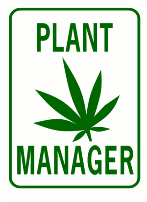 Plant manager rectangle