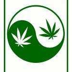 Yin Yang Pot Leaf Rectangle
