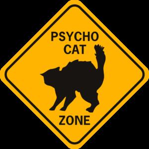 Cat Psycho Cat Zone solid diamond funny aluminum sign