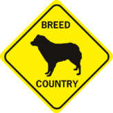 DOG BREED COUNTRY