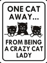 cat one cat away crazy