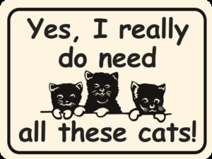 cat yes i really do need cats