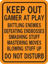 KEEP OUT GAMER AT PLAY WORDS ONLY