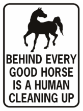 behind every horse there is a good human