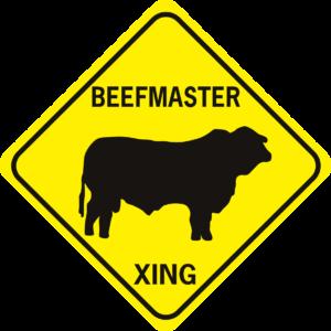 COW BEEFMASTER
