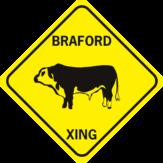 cow braford cow 2 cut outs