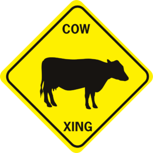 COW COW 1