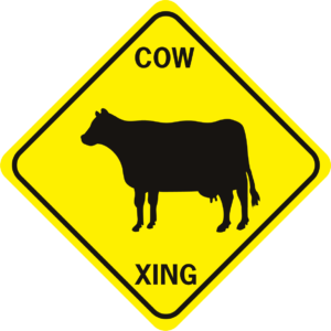 cow 2 cow
