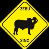 COW ZEBU