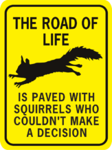The Road of Life is Paved rectangle