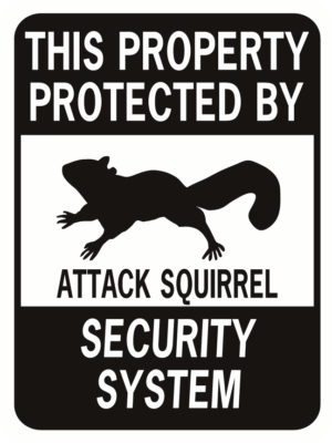 This Property Protected by Attack Squirrel