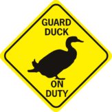 Duck Guard Duck On Duty