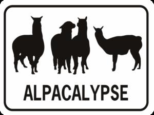 alpacalypse rectangle
