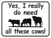cow Yes I Really Do Need All These Cows