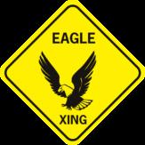 Eagle Xing