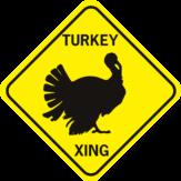 Turkey Xing