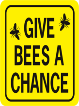 Bee Give Bees A Chance Rectangle